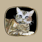 Bubblehead Cat Pin